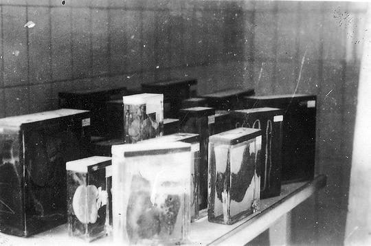 800px-Buchenwald-J-Rouard-24.jpg