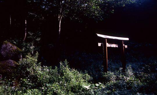 dc199051.jpg
