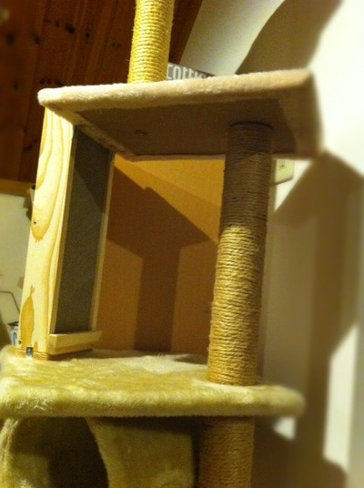 cattower3