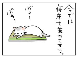 猫と一緒-20130329_07