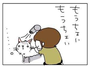猫と一緒-20110614_12