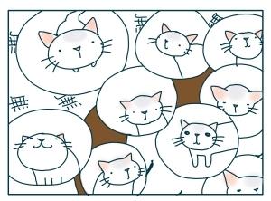 猫と一緒-20091112_17