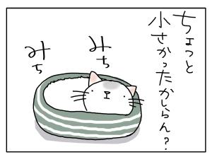 猫と一緒-20131001_05