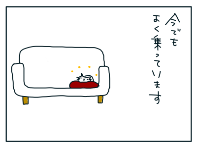 20190222_03
