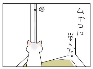 猫と一緒-20100728_01