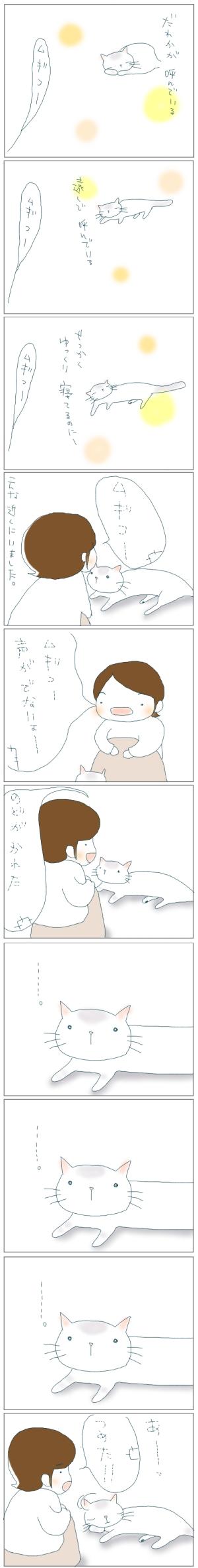 猫と一緒-20080530