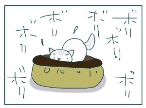 猫と一緒-20091114_10