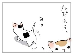 猫と一緒-20100425_02