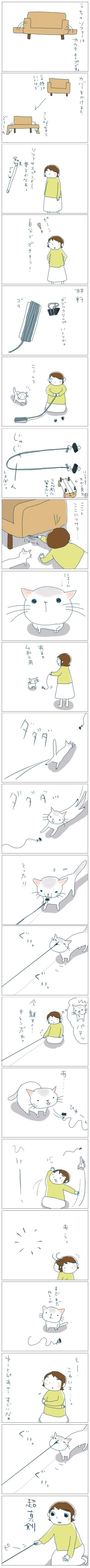 猫と一緒-20081028
