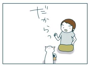 猫と一緒-20090821_06
