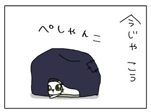 猫と一緒-20131112_02