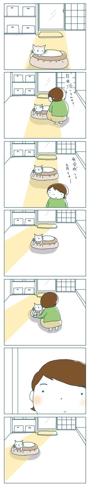猫と一緒-20081126