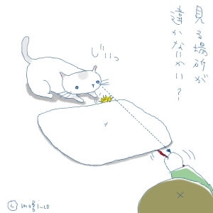 猫と一緒-20071001