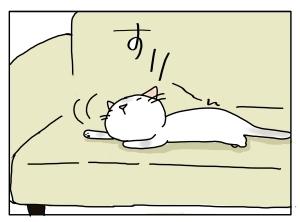 猫と一緒-20110318_04