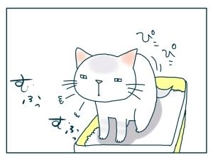 猫と一緒-20091125_07