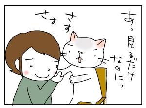 猫と一緒-20100319_16