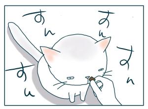 猫と一緒-20090821_11