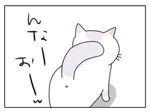 猫と一緒-20100222_14