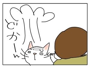 猫と一緒-20110614_09