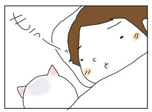 猫と一緒-20100116_16