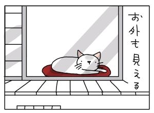 猫と一緒-20130513_02