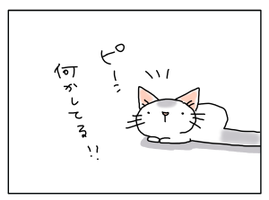 20170208_03
