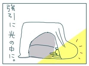 猫と一緒-20091228_19