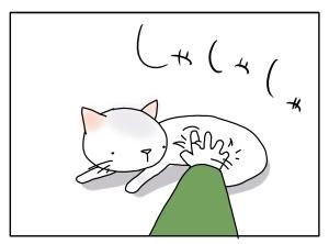 猫と一緒-20100219_05