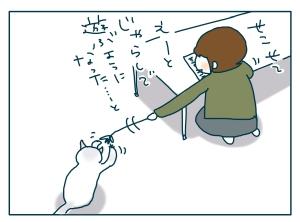 猫と一緒-20090709_02