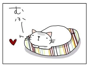 猫と一緒-20130725_07