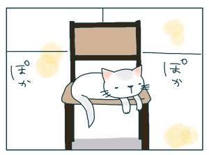 猫と一緒-20091214_02