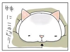 猫と一緒-20100227_06