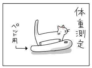猫と一緒-20110520_02