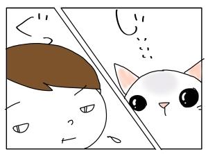 猫と一緒-20101208_08