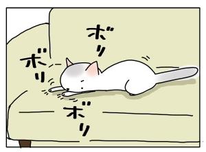 猫と一緒-20110318_03