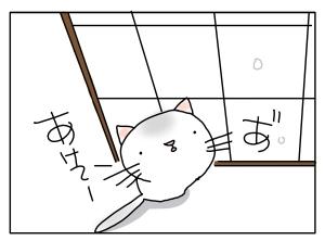 猫と一緒-20131210_05