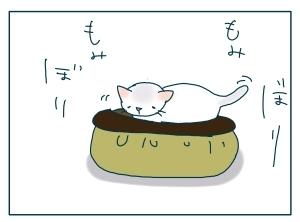 猫と一緒-20091114_08