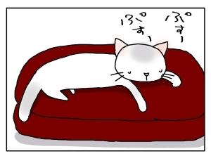 猫と一緒-20121010_10