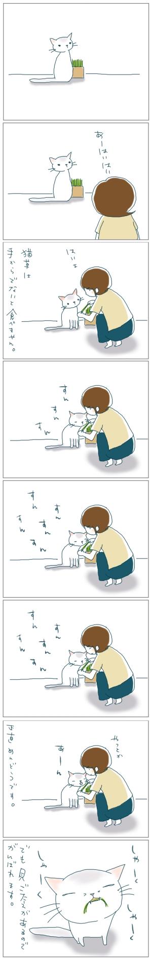 猫と一緒-20080925