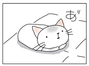 猫と一緒-20130711_05