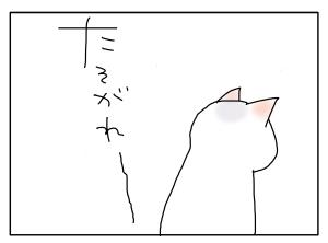 猫と一緒-20100820_01