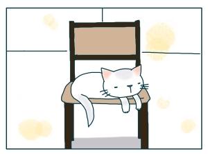 猫と一緒-20091214_07