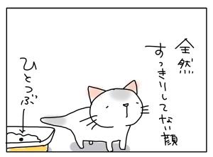 猫と一緒-20111115_04
