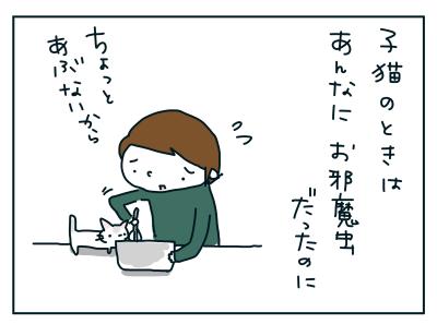 20190315_08