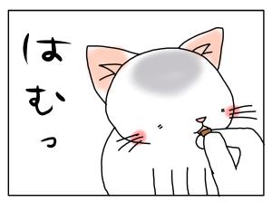 20170120_04