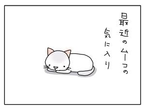 猫と一緒-20100618_01