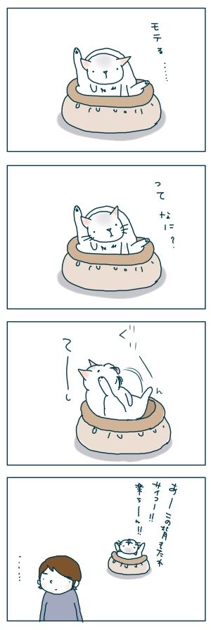 猫と一緒-20081229-04