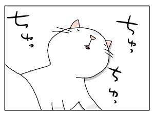 猫と一緒-20100318_06