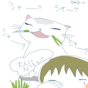 猫と一緒-20061113