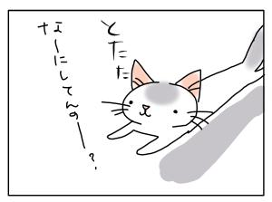 20171206_02